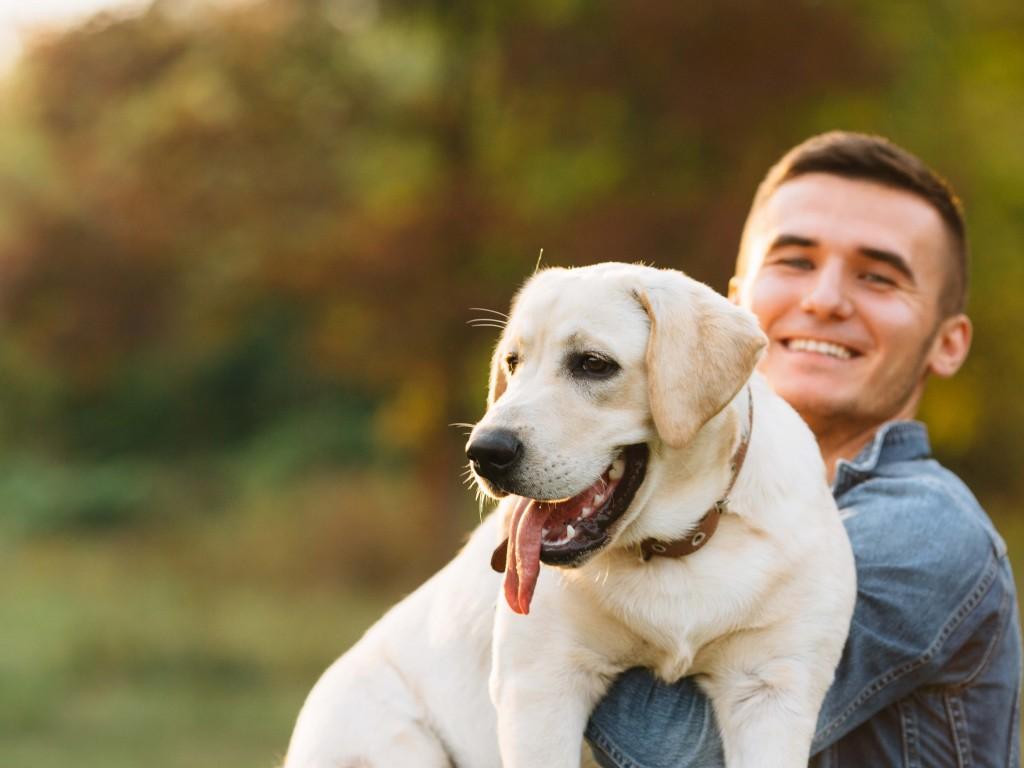 Ne csak télen gondolj rá, avagy nyáron is fontos a hőszigetelt kutyaház!